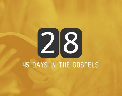 Sunday 25th June – Luke 11 and 12