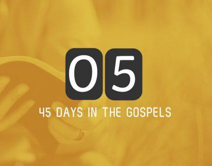 Friday 2nd June – Matthew 9 & 10