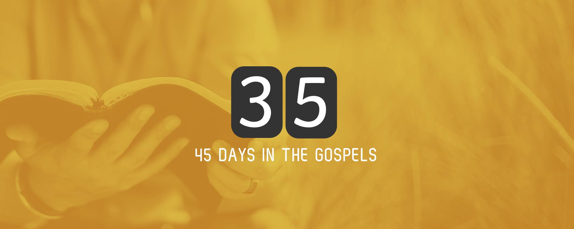 Sunday 2nd July – John 1 and 2