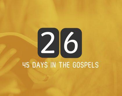 Friday 23rd June – Luke 7 and 8
