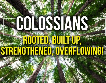 Colossians 3: 5-11 Throw away those old rags!