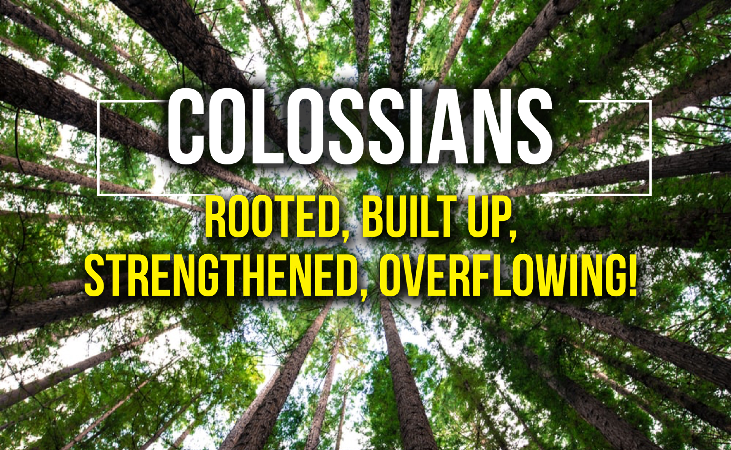 Colossians 2:16-23 Let no-one disqualify you